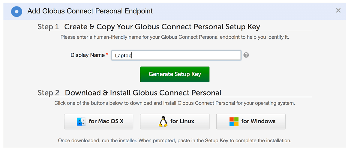 Adding a Display Name for the new personal endpoint in the Step 1 box.